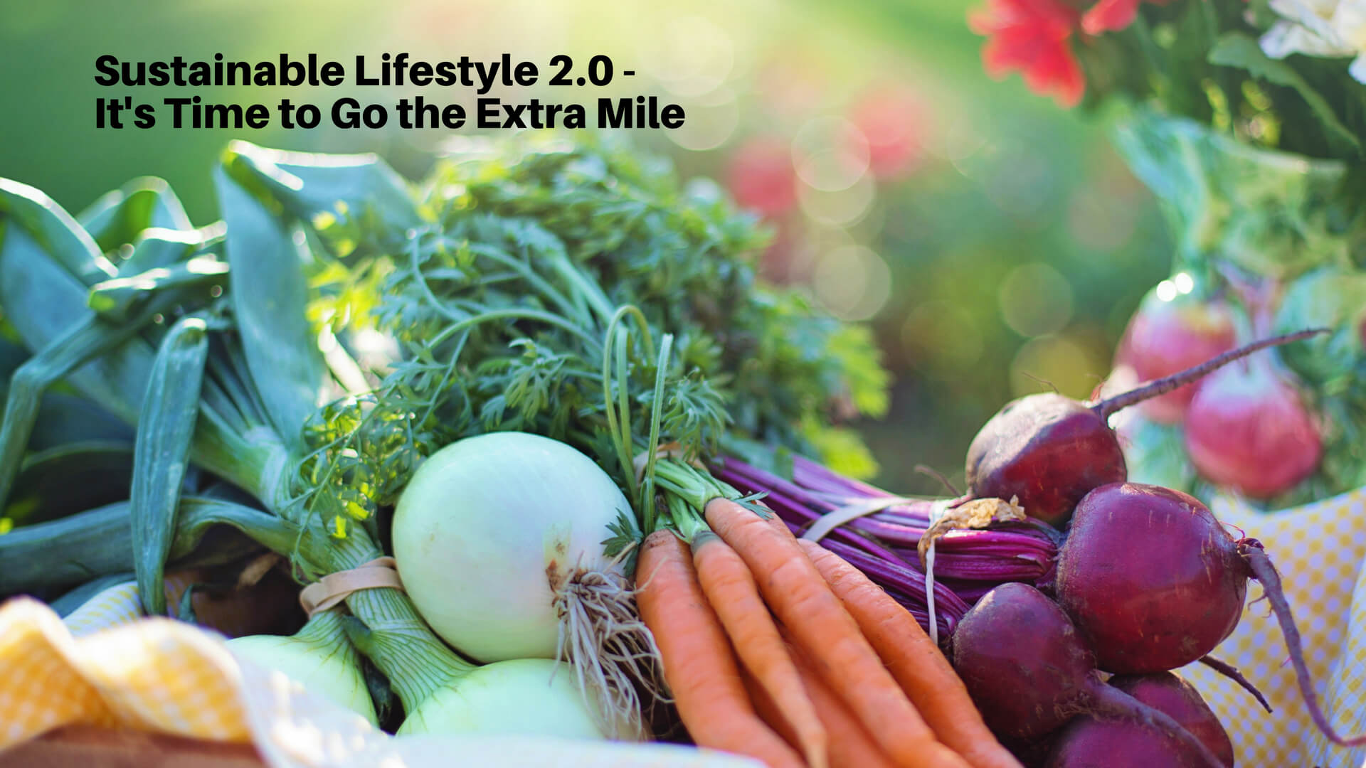 Sustainable Lifestyle 2.0 – It's Time to Go the Extra Mile