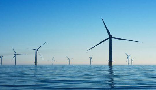 IoT and Environmental Sustainabiity